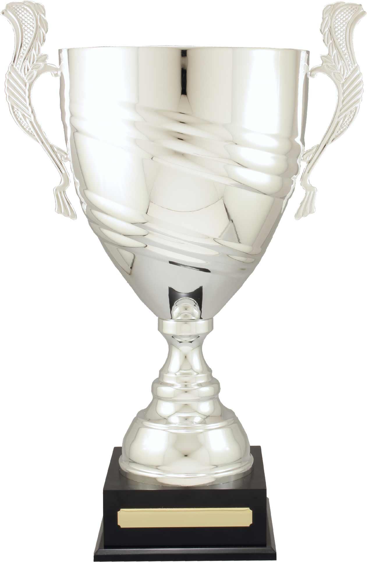 Italian Metal Swirl Cup