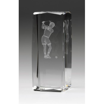 Hologram Female Player