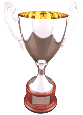 Silver Finish Trophy Cup 2907