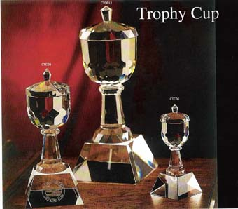 [products/Elite Trophy Cup.jpg]